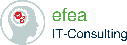 efea IT-Consulting